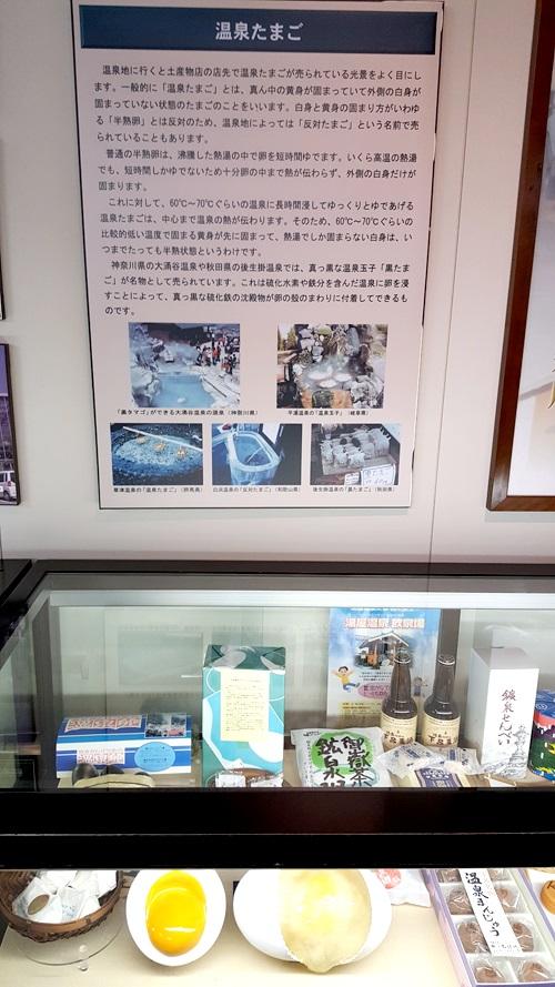 Gifu2017_9